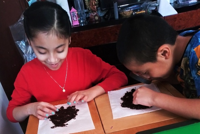 Students doing an experiment with soil